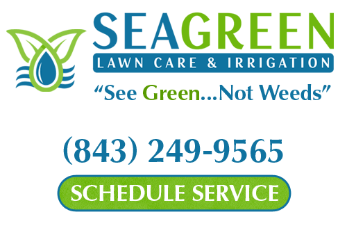 lawn care company north myrtle beach sc