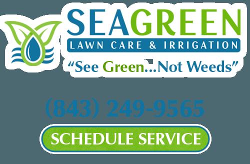 lawn care company north myrtle beach sc